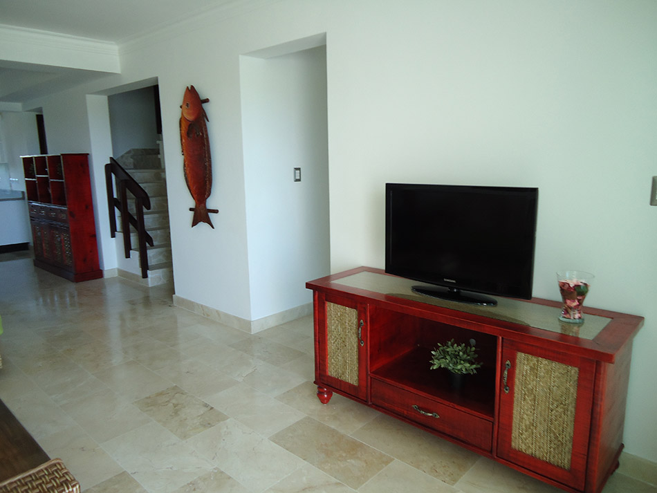 Living Room Area TV